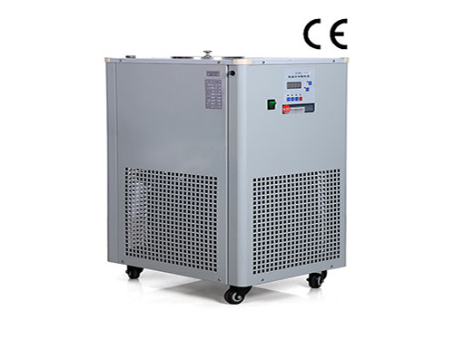 DLSB-10 Liters Low Temperature Cooling Liquid circulation chiller